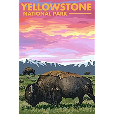 Yellowstone National Park, Wyoming - Bison and Sunset (16x24 Giclee Gallery Print, Wall Decor Travel Poster)