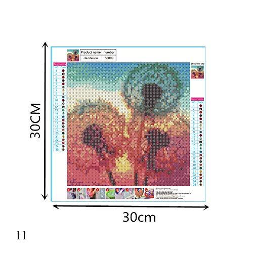 DIY 5D Diamond schilderij Kits, landschap handwerk Cross Stitch Diamond schilderij speciale vorm Rhinestones volledige boor voor Home Canvas Wall Decor (11)