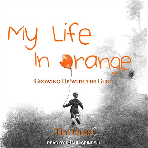 My Life in Orange audiobook cover art