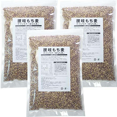 讃岐もち麦 ダイシモチ 1kg×3袋【国産 高栄養 3kg 紫もち麦ごはん 送料無料 人気 3キロ 香川県産】