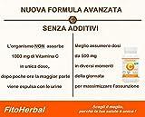 Zoom IMG-1 fitoherbal vitamina c pura senza