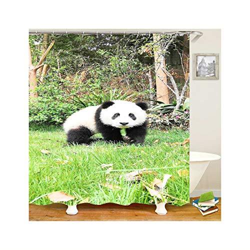 DOLOVE Antischimmel Duschvorhang Polyester Panda Lustiger 3D Duschvorhang 150x180 cm