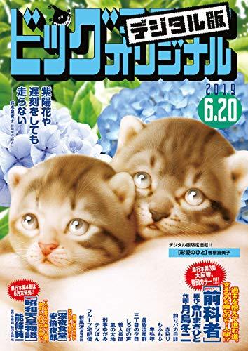 ビッグコミックオリジナル 2019年12号(2019年6月5日発売) [雑誌]