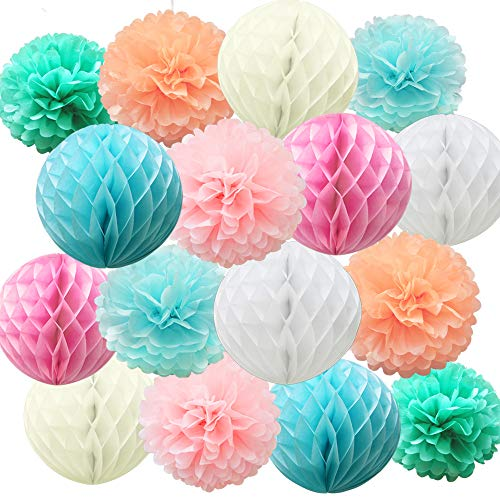 Time to Sparkle 16 Pack Mix Tissue Paper Pompoms Honeycomb Balls Pom Poms Table Garland Wedding Party Decoration (Balls-Colorful Shade)