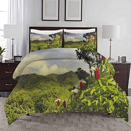 Forest Duvet Cover Set King Size Rural Scenery Costa Rica Countryside Greenery Tropic Accents Botanical Bed Quilt Cover Decorative 3 Piece Bedding Set with 2 Pillow Shams Green Red Violet Blue