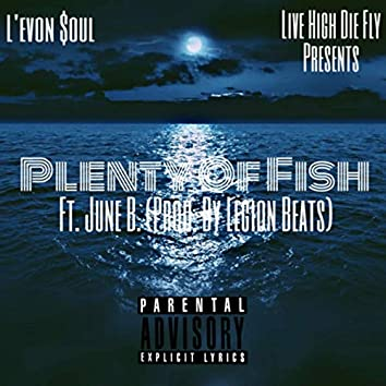 Plenty Of Fish(P.O.F)