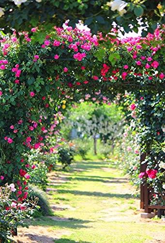 Flores de Primavera césped Verde césped Bosque jardín Fondos para fotografía niño Ducha Foto telón de Fondo Estudio fotográfico A5 9x6 pies / 2,7x1,8 m