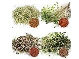 1 kg BIO Keimsprossen Mischung -4 Sorten Mix- Keimsaat 4 x 250 g Samen für die Sprossenanzucht...