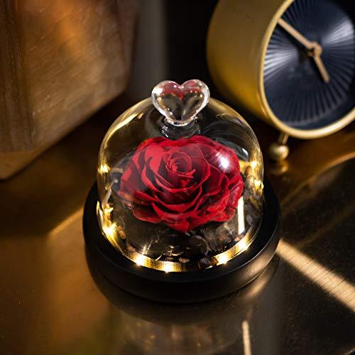 eterna rosa preservada en vidrio, hecha a mano para siempre rosa belleza y la bestia rosa en vidrio Regalo para fiesta, boda, decoración, día de San Valentín, cumpleaños, aniversario, regalo romántico