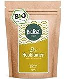 Bio-Heublumen (250g) - von Hebammen empfohlen - Lockerung und Entspannung - Anwendung bei rheumatischen Problemen - 100% Bio-Qualität