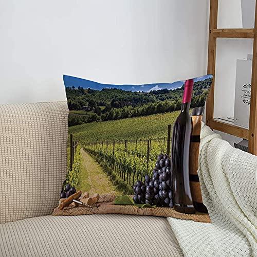 Fundas de cojines sencillas y clásicas de 45 x 45 cm,Decoración de bodega, botellas de vino tinto con uvas en t,ideales para casa, oficina o para la espalda en el coche - Fundas de Poliéster para sofá
