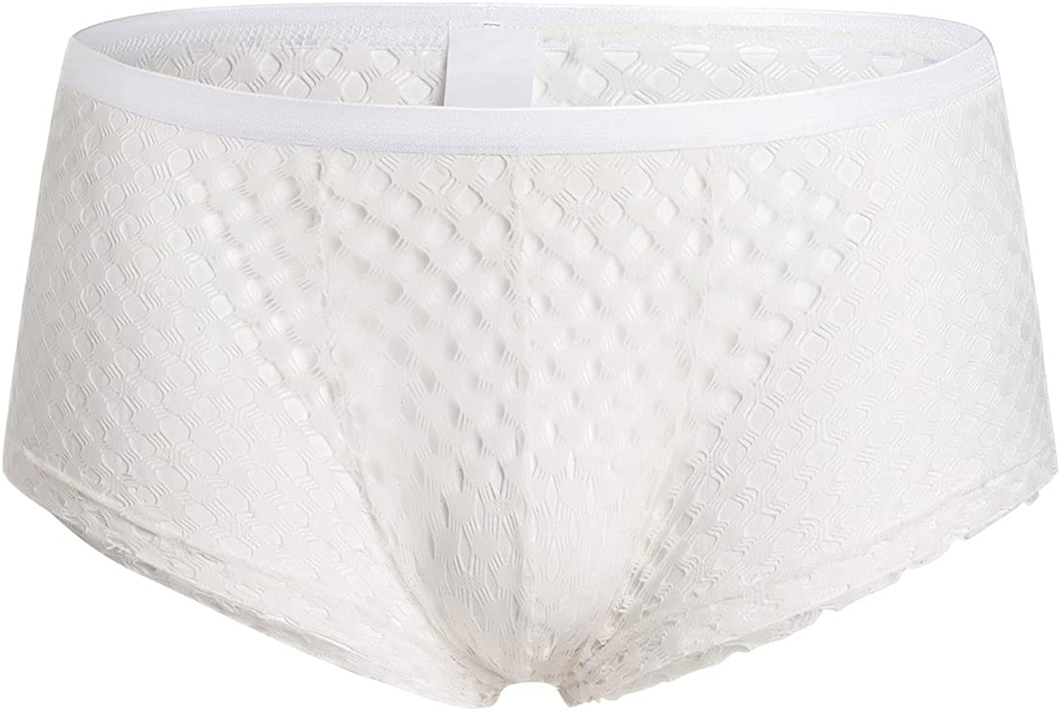 Men's See Through Fishnet Boxer Briefs Openwork Mesh Breathable Underwear Sexy Sissy Soft Hollow Lingerie Underpants