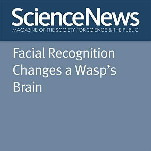 『Facial Recognition Changes a Wasp's Brain』のカバーアート