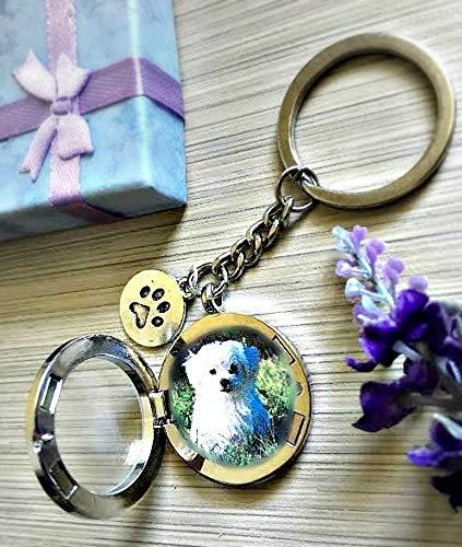 Foto Guardapelo para mascota con CAJA DE REGALO Relicario de la memori
