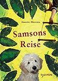 Samsons Reise (Kinderroman) - Annette Mierswa