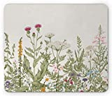Lunarable Floral Mouse Pad, Herbs and Wildflowers Botany Themed Illustration with Butterflies Spring Vegetation, Standard Size Rectangle Non-Slip Rubber Mousepad, Multicolor