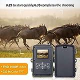 Zoom IMG-1 qylt fotocamera da caccia 2g