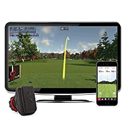 Rapsodo R-Motion and Golf Club Simulator