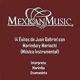 14 Exitos de Juan Gabriel Con Marimba y Mariachi