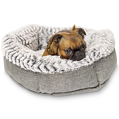 Pet Craft Supply Co. Memory Foam Pet Bed