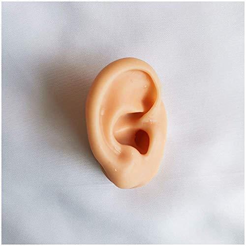 LBYLYH Modelo de Oreja de Silicona Flexible - Plantilla de simulación del oído con Detalles de la acupuntura, práctica Elija Studs Pendiente de visualización de Accesorios