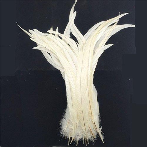 10 Piezas Plumas de Gallo Tinte de Cola 35-40 cm Hobby Creat