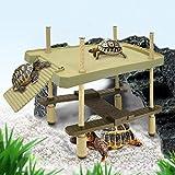 aleawol Plataforma flotante para reptiles, tortuga tomar el sol, plataforma de 2 capas, tortuga, rampa pier, acuario, decoración, mascotas, suministrado