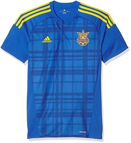 adidas Herren FFU Away Jersey Das Auswärtstrikot der ukrainischen Nationalmannschaft T-shirt, Blau, L