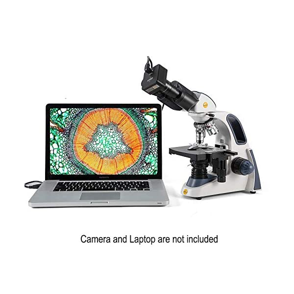 Swift SW380B Binocular Compound Microscope Research-Grade 40X-2500X, Ultra-Precise Focusing,Siedentopf Head,Mechanical Stage, Abbe Condenser
