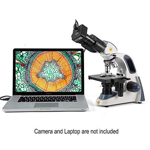 Swift SW380B Fernglasmikroskop, Forschungs-Grade, 40 x 2500 X, ultrapräzise Fokussierung, Siedentopfkopf, mechanische Bühne, Abbe-Kondensator