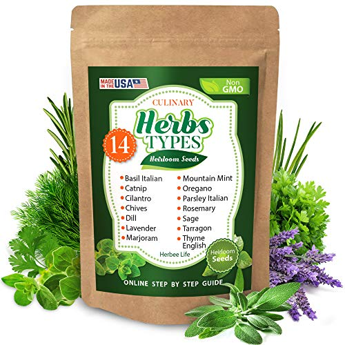 3700 Culinary Herb Seeds for Planting Indoor and Outdoor - Heirloom and Non-GMO - Basil, Lavender, Parsley Italian, Thyme, Rosemary, Dill, Catnip, Cilantro, Chives, Mint, Oregano, Sage, etc