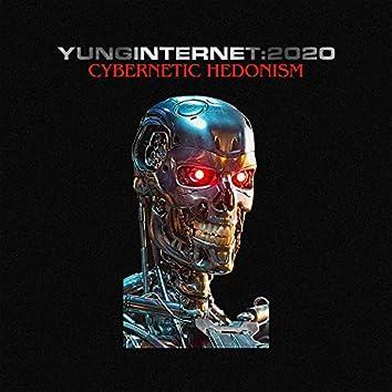 Cybernetic Hedonism