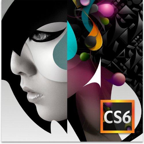 Adobe Design Standard CS6 arabisch Nahen Osten PC (nur DVD, keine Lizenz)