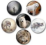 Merchandise for Fans Wolf Wölfe Grauwolf europäischer