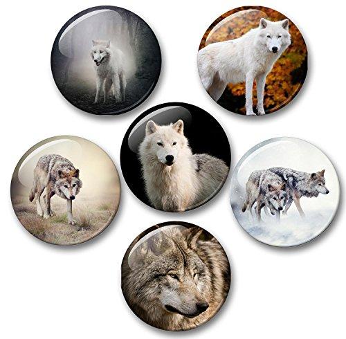 Merchandise for Fans Wolf Wölfe Grauwolf europäischer Wolf - 6 große Kühlschrankmagnete Ø 5 cm [ 02 ] für Memoboard Pinnwand Magnettafel Whiteboard