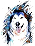 Pintar por Numeros Lobo animal creativo para Adultos Niños con Pinceles y Pinturas Decoraciones para el Hogar 16 * 20 Pulgadas (Sin Marco) -HYS114