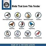 Droll Yankees YF-M Yankee Flipper Squirrel-Proof Bird Feeder, 21 Inch, Green