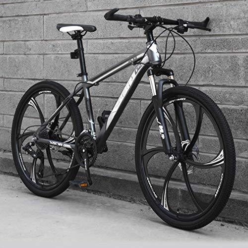 ZGYQGOO Mountain Bike per Adulti, di aggiornamento Leggero Alto tenore di Carbonio Telaio in Acciaio Snowmobile Biciclette, Double Disc Beach Freni della Bicicletta, 26 Pollici Ruote