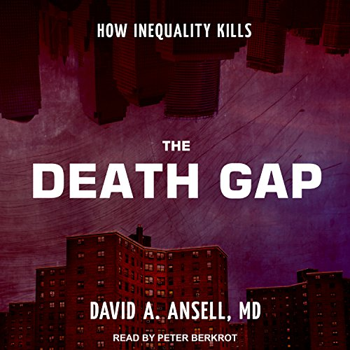 The Death Gap audiobook cover art