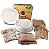 Vajilla desechable de 250 Piezas para 50 Personas. Vajilla ecológica de caña de azúcar. Incluye 50 Platos 150 cubiertos de madera y 50 servilletas.