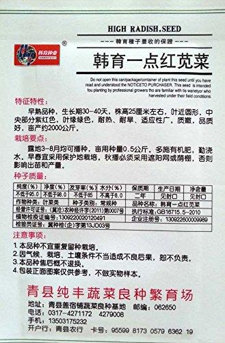 (Mix ordre minimum $5) 1 Original Lot de 10 g 1000 + pcs Graines de légumes, Great Circle Feuilles Rouge Amarante Graines