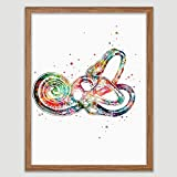 Inner Ear Labyrinth Anatomy Watercolor Poster Ear Diagram Art Anatomical Office Decor Ear Anatomy Print Audiology Specialist Cross Section Clinic Hearing Office Decor Great Gift for Audiologist