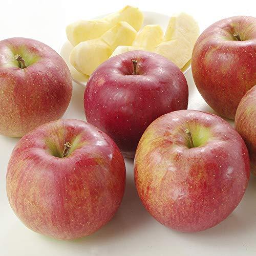 国華園 食品 りんご 長野産 シナノスイート 10kg 1箱