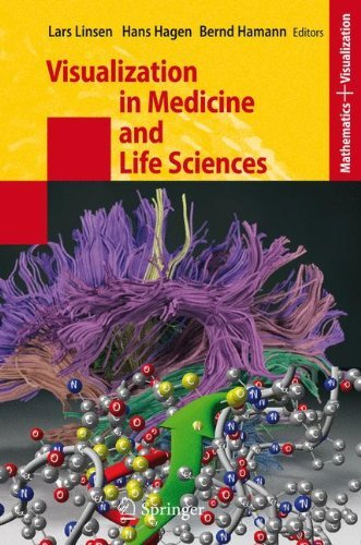 Visualization in Medicine and Life Sciences (Mathematics and Visualization)