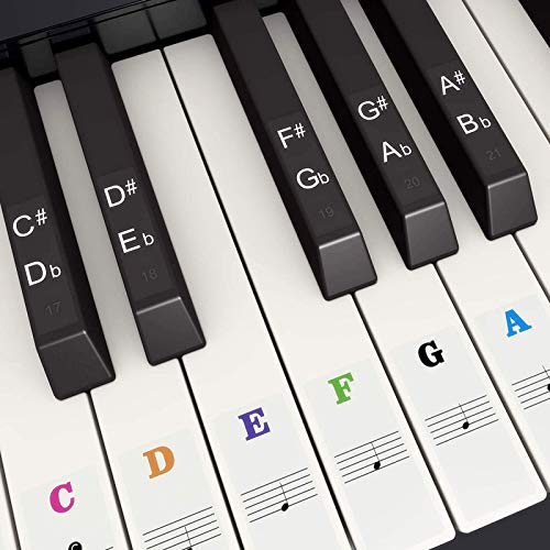 SUEWIO Piano Keyboard Stickers for 37/49/54/61/88 White and Black Keys, Colorful Music Electronic Piano Keyboard Note Stickers for Kids Beginners, Transparent & Removable