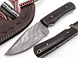 Best hunting knives - Nooraki SK-65 Handmade Damascus Hunting Knife 8.5 inches Review