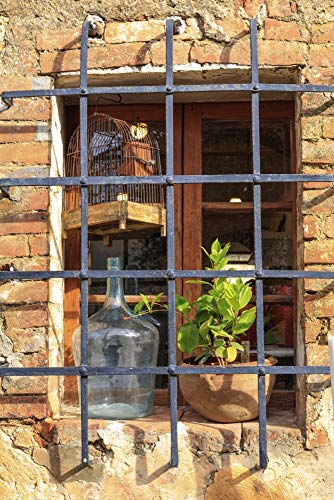 Italy, Monteriggioni. Stone wall, window with bars, wine bottle, bird cage and plant. Poster Print by Emily Wilson (24 x 36)