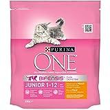 One - Alimento para Gato - Seco - Purina Junior Rico En Poll