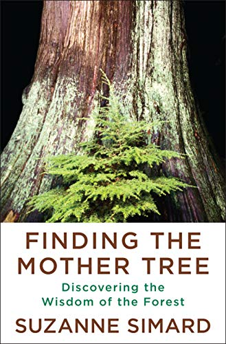 Compare Textbook Prices for Finding the Mother Tree: Discovering the Wisdom of the Forest  ISBN 9780525656098 by Simard, Suzanne