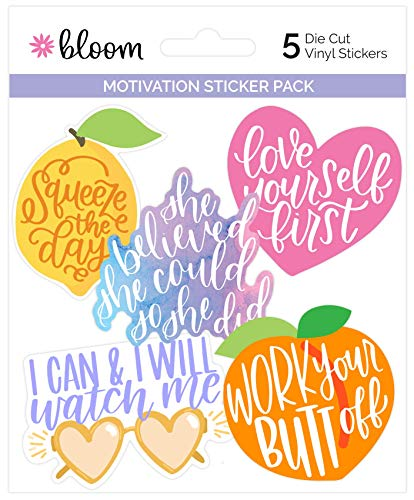 bloom daily planners Vinyl Sticker Set - 5 Colorful Hand-Drawn Decals for Laptops Water Bottles More ~35 - Motivation Pack